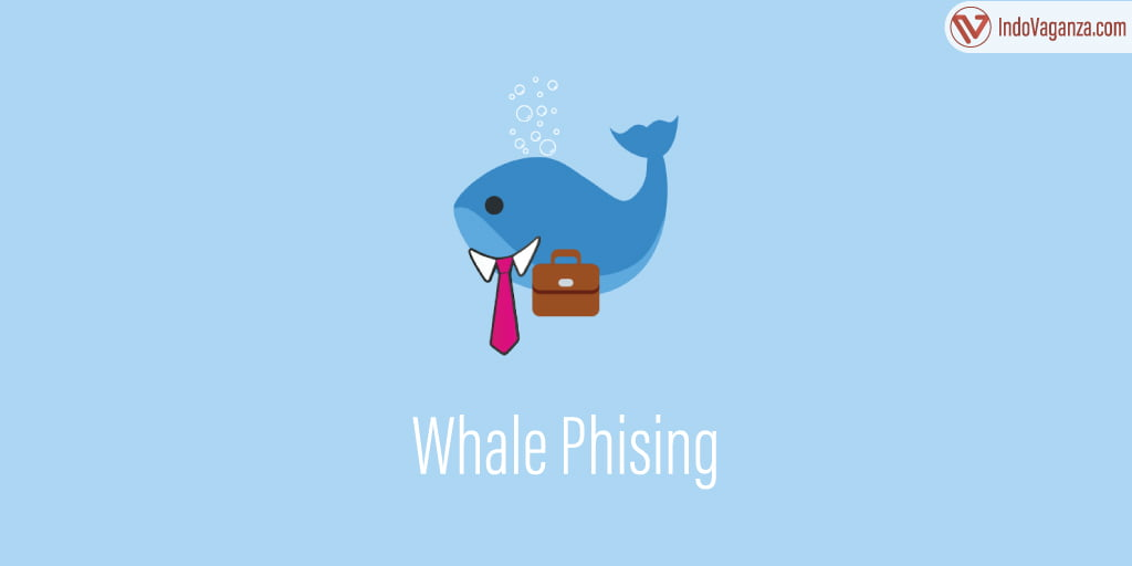 whale phising